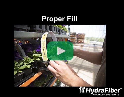 achieving proper fill rates