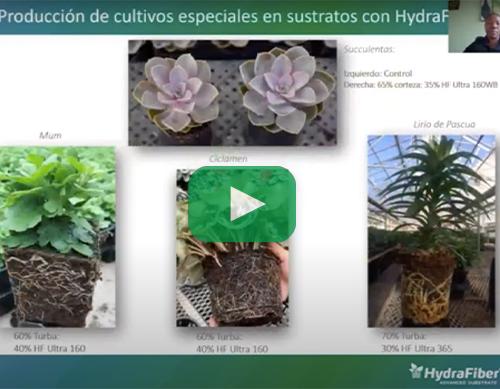 New Grower Video