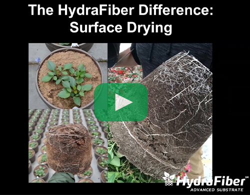 water management surface drying